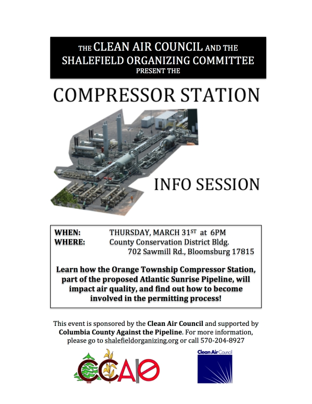 CompressorInfo_flyer